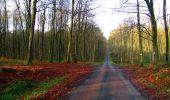 Trail Walk LONGPONT - en foret de Retz_42_ Longpont_la Pierre Clouise_AR - Photo 190