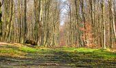 Trail Walk LONGPONT - en foret de Retz_42_ Longpont_la Pierre Clouise_AR - Photo 237