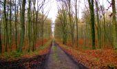 Trail Walk LONGPONT - en foret de Retz_42_ Longpont_la Pierre Clouise_AR - Photo 20