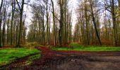 Trail Walk LONGPONT - en foret de Retz_42_ Longpont_la Pierre Clouise_AR - Photo 196
