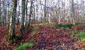 Trail Walk LONGPONT - en foret de Retz_42_ Longpont_la Pierre Clouise_AR - Photo 148