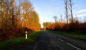 Trail Walk LONGPONT - en foret de Retz_42_ Longpont_la Pierre Clouise_AR - Photo 182