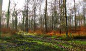 Trail Walk LONGPONT - en foret de Retz_42_ Longpont_la Pierre Clouise_AR - Photo 159