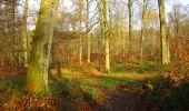 Trail Walk LONGPONT - en foret de Retz_42_ Longpont_la Pierre Clouise_AR - Photo 154