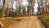 Trail Walk LONGPONT - en foret de Retz_42_ Longpont_la Pierre Clouise_AR - Photo 74