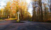 Trail Walk LONGPONT - en foret de Retz_42_ Longpont_la Pierre Clouise_AR - Photo 241