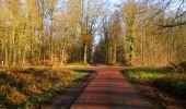 Trail Walk LONGPONT - en foret de Retz_42_ Longpont_la Pierre Clouise_AR - Photo 15