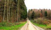 Trail Walk LONGPONT - en foret de Retz_42_ Longpont_la Pierre Clouise_AR - Photo 90
