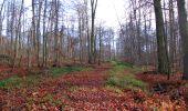 Trail Walk LONGPONT - en foret de Retz_42_ Longpont_la Pierre Clouise_AR - Photo 147