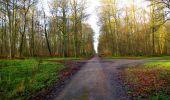Trail Walk LONGPONT - en foret de Retz_42_ Longpont_la Pierre Clouise_AR - Photo 194
