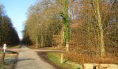 Trail Walk LONGPONT - en foret de Retz_42_ Longpont_la Pierre Clouise_AR - Photo 14
