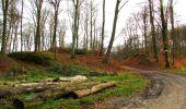 Trail Walk LONGPONT - en foret de Retz_42_ Longpont_la Pierre Clouise_AR - Photo 44