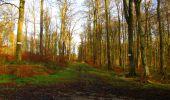 Trail Walk LONGPONT - en foret de Retz_42_ Longpont_la Pierre Clouise_AR - Photo 188