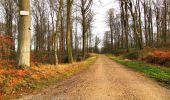 Trail Walk LONGPONT - en foret de Retz_42_ Longpont_la Pierre Clouise_AR - Photo 70