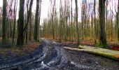 Trail Walk LONGPONT - en foret de Retz_42_ Longpont_la Pierre Clouise_AR - Photo 212