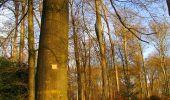 Trail Walk LONGPONT - en foret de Retz_42_ Longpont_la Pierre Clouise_AR - Photo 152