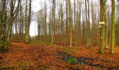 Trail Walk LONGPONT - en foret de Retz_42_ Longpont_la Pierre Clouise_AR - Photo 38