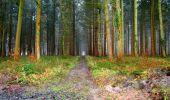 Trail Walk LONGPONT - en foret de Retz_42_ Longpont_la Pierre Clouise_AR - Photo 268