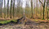 Trail Walk LONGPONT - en foret de Retz_42_ Longpont_la Pierre Clouise_AR - Photo 238