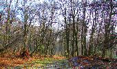 Trail Walk LONGPONT - en foret de Retz_42_ Longpont_la Pierre Clouise_AR - Photo 23