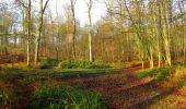 Trail Walk LONGPONT - en foret de Retz_42_ Longpont_la Pierre Clouise_AR - Photo 155