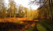 Trail Walk LONGPONT - en foret de Retz_42_ Longpont_la Pierre Clouise_AR - Photo 167