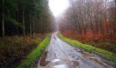 Trail Walk LONGPONT - en foret de Retz_42_ Longpont_la Pierre Clouise_AR - Photo 255