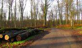 Trail Walk LONGPONT - en foret de Retz_42_ Longpont_la Pierre Clouise_AR - Photo 173