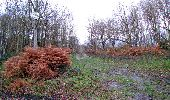 Trail Walk LONGPONT - en foret de Retz_42_ Longpont_la Pierre Clouise_AR - Photo 106