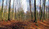 Trail Walk LONGPONT - en foret de Retz_42_ Longpont_la Pierre Clouise_AR - Photo 32