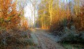 Trail Walk LONGPONT - en foret de Retz_42_ Longpont_la Pierre Clouise_AR - Photo 3