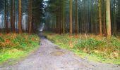 Trail Walk LONGPONT - en foret de Retz_42_ Longpont_la Pierre Clouise_AR - Photo 264