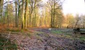 Trail Walk LONGPONT - en foret de Retz_42_ Longpont_la Pierre Clouise_AR - Photo 6