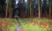 Trail Walk LONGPONT - en foret de Retz_42_ Longpont_la Pierre Clouise_AR - Photo 261
