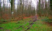 Trail Walk LONGPONT - en foret de Retz_42_ Longpont_la Pierre Clouise_AR - Photo 8