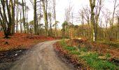 Trail Walk LONGPONT - en foret de Retz_42_ Longpont_la Pierre Clouise_AR - Photo 51