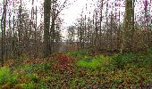 Trail Walk LONGPONT - en foret de Retz_42_ Longpont_la Pierre Clouise_AR - Photo 118