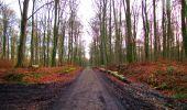 Trail Walk LONGPONT - en foret de Retz_42_ Longpont_la Pierre Clouise_AR - Photo 21