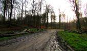 Trail Walk LONGPONT - en foret de Retz_42_ Longpont_la Pierre Clouise_AR - Photo 43