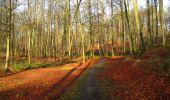 Trail Walk LONGPONT - en foret de Retz_42_ Longpont_la Pierre Clouise_AR - Photo 162