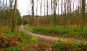 Trail Walk LONGPONT - en foret de Retz_42_ Longpont_la Pierre Clouise_AR - Photo 91