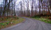 Trail Walk LONGPONT - en foret de Retz_42_ Longpont_la Pierre Clouise_AR - Photo 102