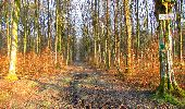Trail Walk LONGPONT - en foret de Retz_42_ Longpont_la Pierre Clouise_AR - Photo 2