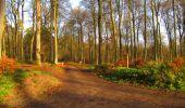 Trail Walk LONGPONT - en foret de Retz_42_ Longpont_la Pierre Clouise_AR - Photo 175