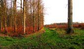 Trail Walk LONGPONT - en foret de Retz_42_ Longpont_la Pierre Clouise_AR - Photo 11