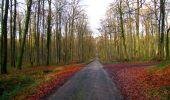Trail Walk LONGPONT - en foret de Retz_42_ Longpont_la Pierre Clouise_AR - Photo 200