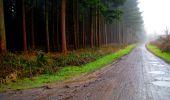 Trail Walk LONGPONT - en foret de Retz_42_ Longpont_la Pierre Clouise_AR - Photo 265