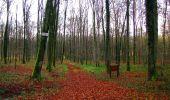 Trail Walk LONGPONT - en foret de Retz_42_ Longpont_la Pierre Clouise_AR - Photo 201