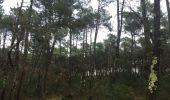 Randonnée Marche SOORTS-HOSSEGOR - 40 SEIGNOSSE, entre océan dunes et forêts de pins, Landes - Photo 15