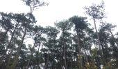 Randonnée Marche SOORTS-HOSSEGOR - 40 SEIGNOSSE, entre océan dunes et forêts de pins, Landes - Photo 14